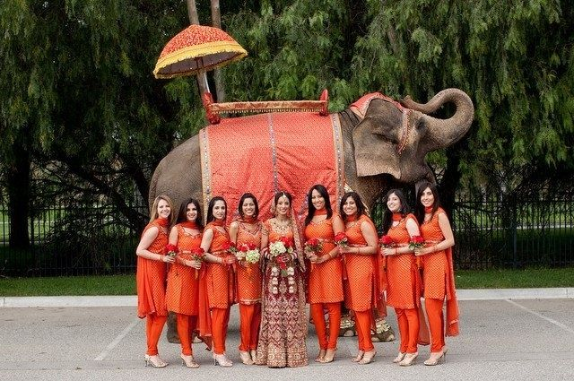 Elephant wedding - 12.jpg