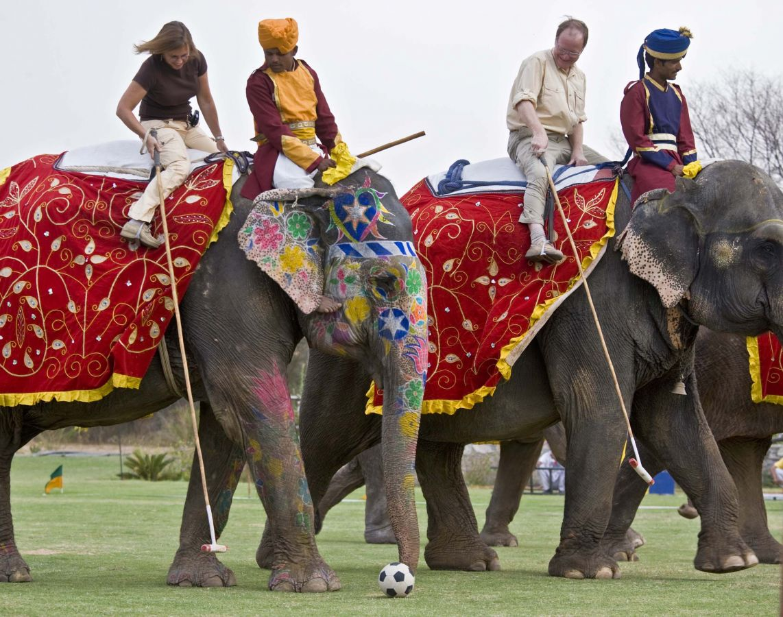 Elephant wedding - 34.jpg