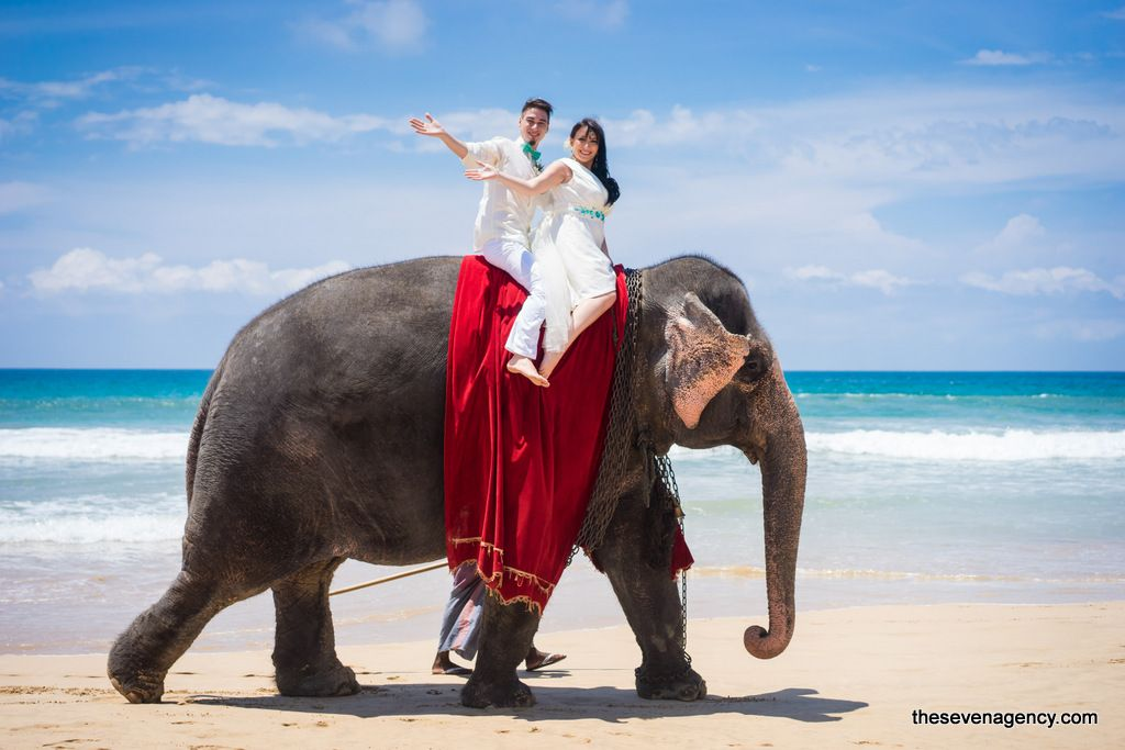 Elephant wedding - 1-DSC00293.jpg