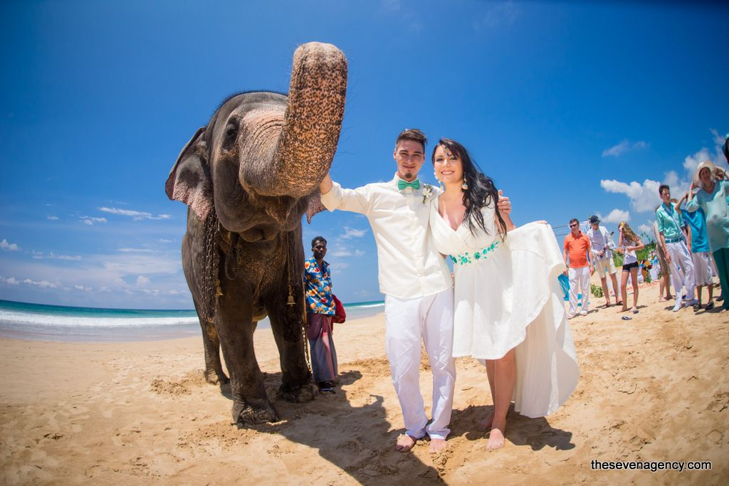 Elephant wedding - 2-DSC00322.jpg