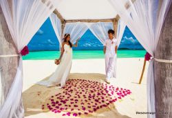 Honeymoon inclusions Professional wedding decorations