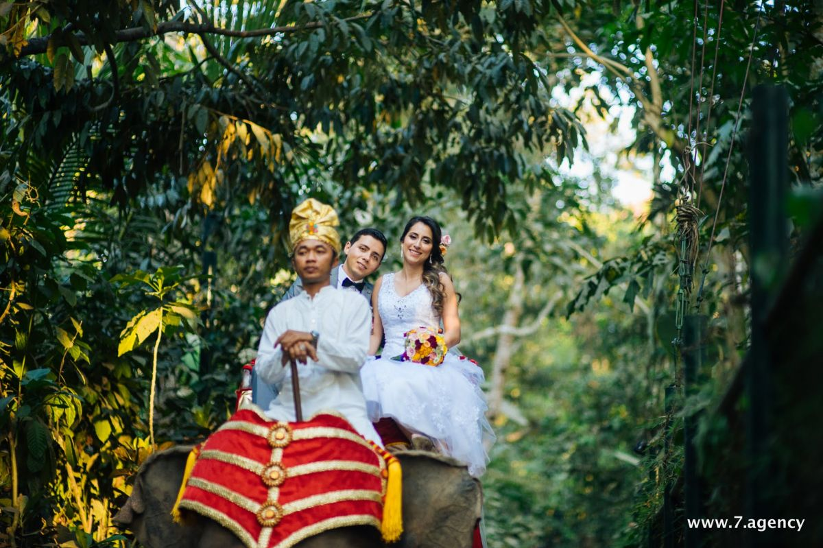 Exotic elephant wedding - _WRD0874.jpg