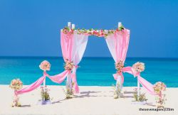 Decorations & style Tropical colors