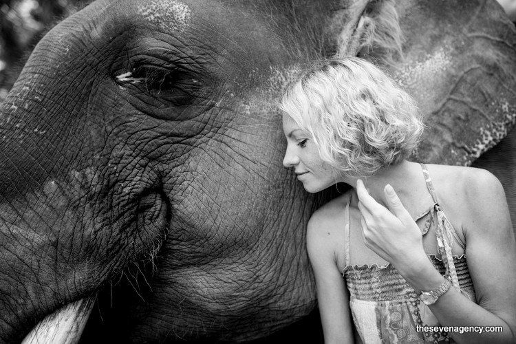 Exotic elephant wedding - IMG_6107.jpg