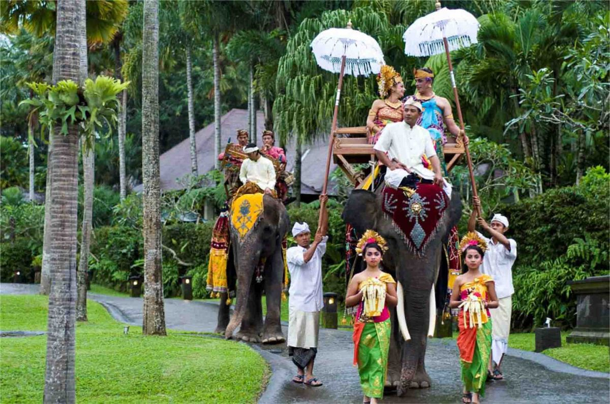 Exotic elephant wedding - Elephant-Ride-x.jpg
