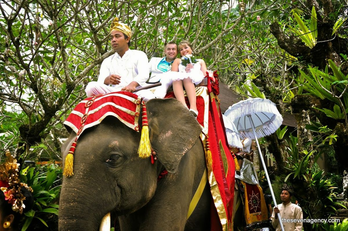 Exotic elephant wedding - ROMAN & TATIANA_01.jpg