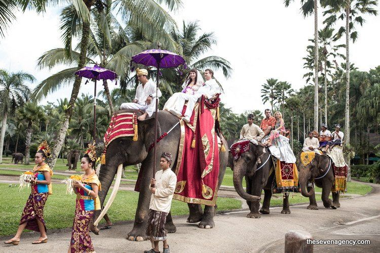 Exotic elephant wedding - IMG_8135.jpg