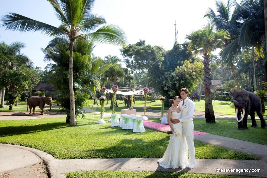 Exotic elephant wedding - ELEPHANTPARKWEDDING.jpg