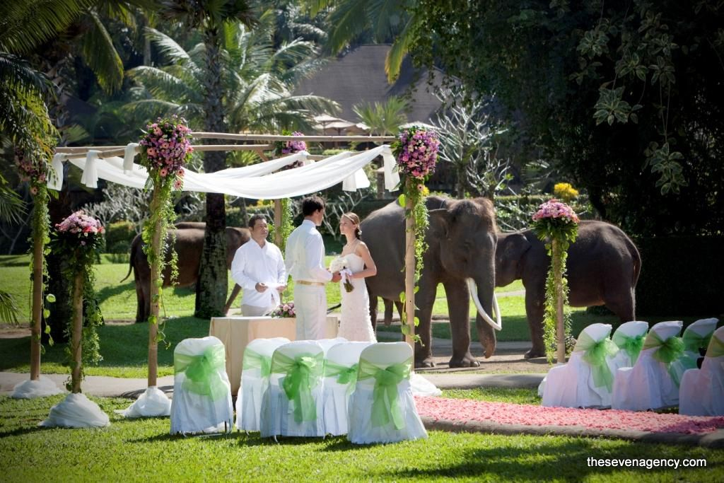 Exotic elephant wedding - ELEPHANT_PARK_WEDDING.jpg