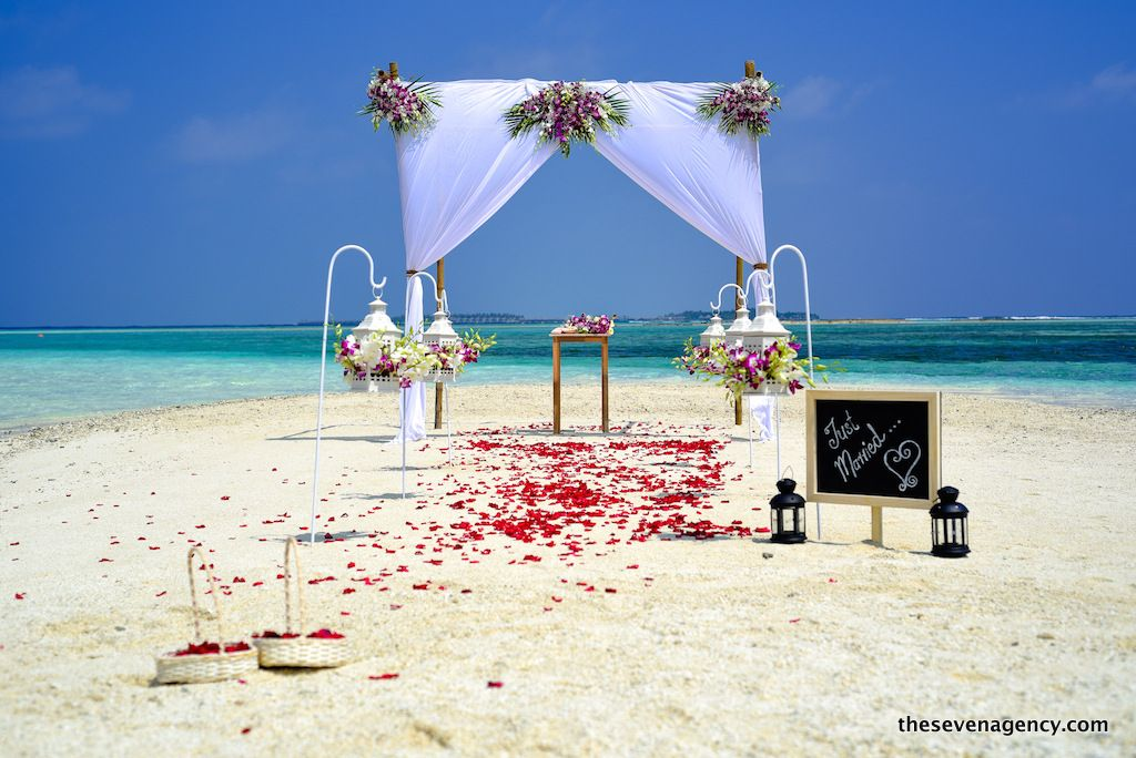 Beach wedding - DSC_3615.jpg